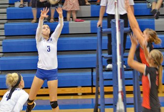 Wynford volleyball tops Shelby in 4 sets