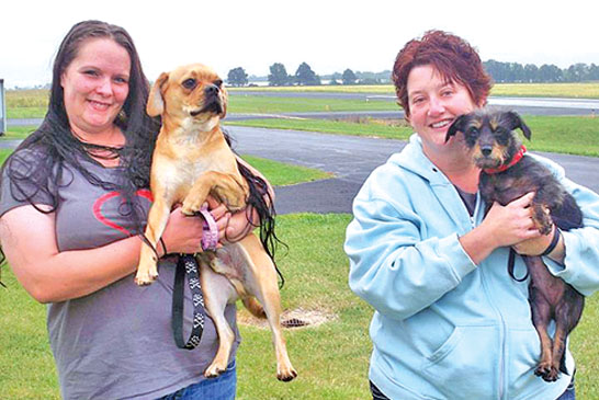 ASAP dogs fly home to New York