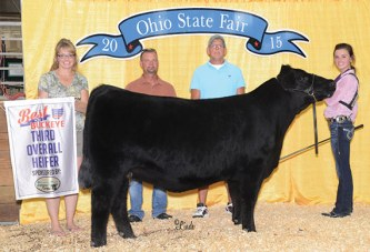 Local cattlemen successful in Best of the Buckeye program at state fair