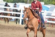 2015 fair results: Horse shows