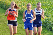 Led by Cook, Carey places 2nd at Wynford