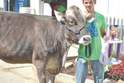 Exhibitors win awards, ribbons at 2015 Wyandot County Fair