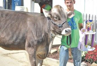 Exhibitors win awards, ribbons at 2015 Wyandot County Fair