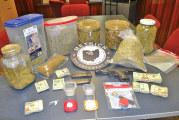 Search warrant yields gun, drugs