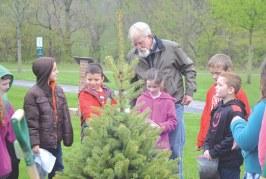 Upper Sandusky students plant blue spruce to mark Arbor Day