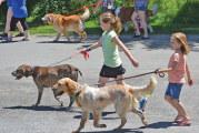 St. Peter's Festival, Relay for Life, Pawzfest offer plenty of fun