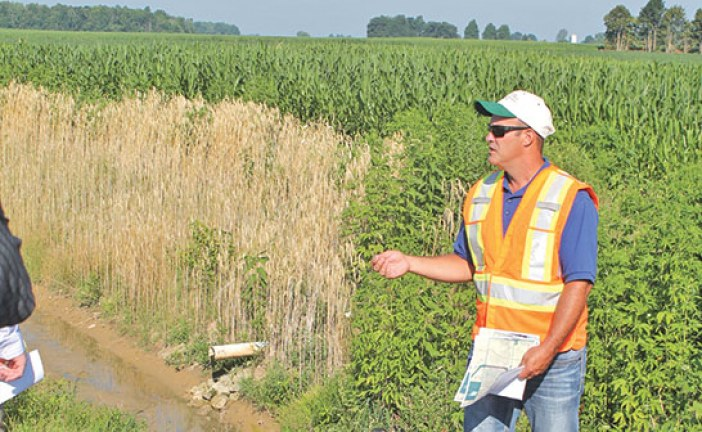 Tour features cover crops, ditch maintenance projects in county