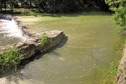Reports: Toxins not detected in apparent algae in Sandusky River