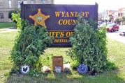 Marijuana eradication efforts locate 38 plants in Wyandot County