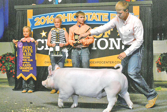 Wyandot County's Frey takes home 1st state grand champion title in hogs