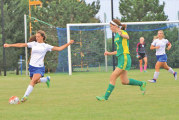 Falcons shut out Hornets in opener