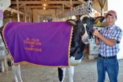 More fair winners from the Wyandot County Fair