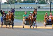 Celebrity racing