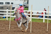 Competitions, entertainment plenty at Wyandot County Fair
