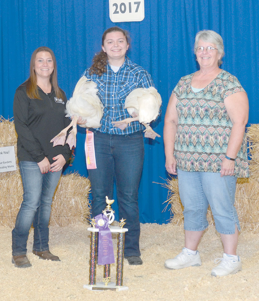 Grand champion market geese