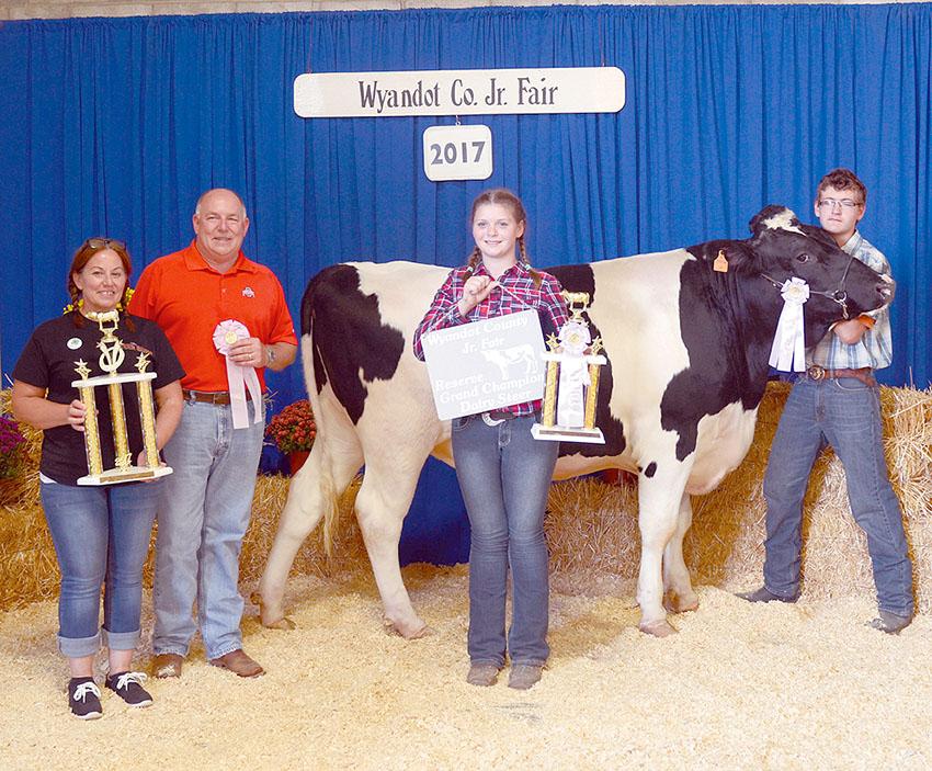 Reserve champion market dairy steer