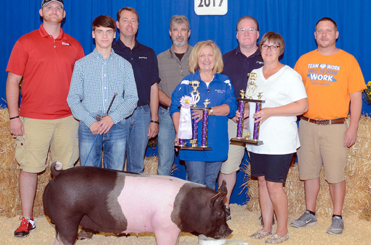 Reserve champion overall market hog
