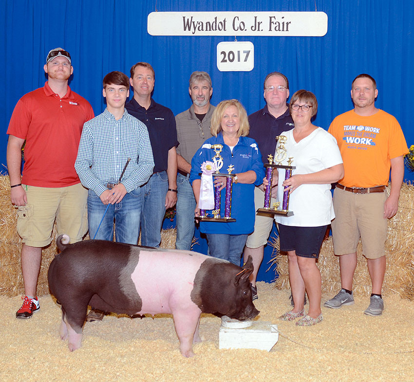 Reserve champion overall market hog