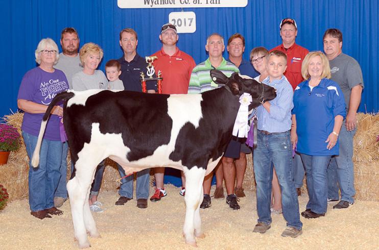 Reserve champion dairy feeder