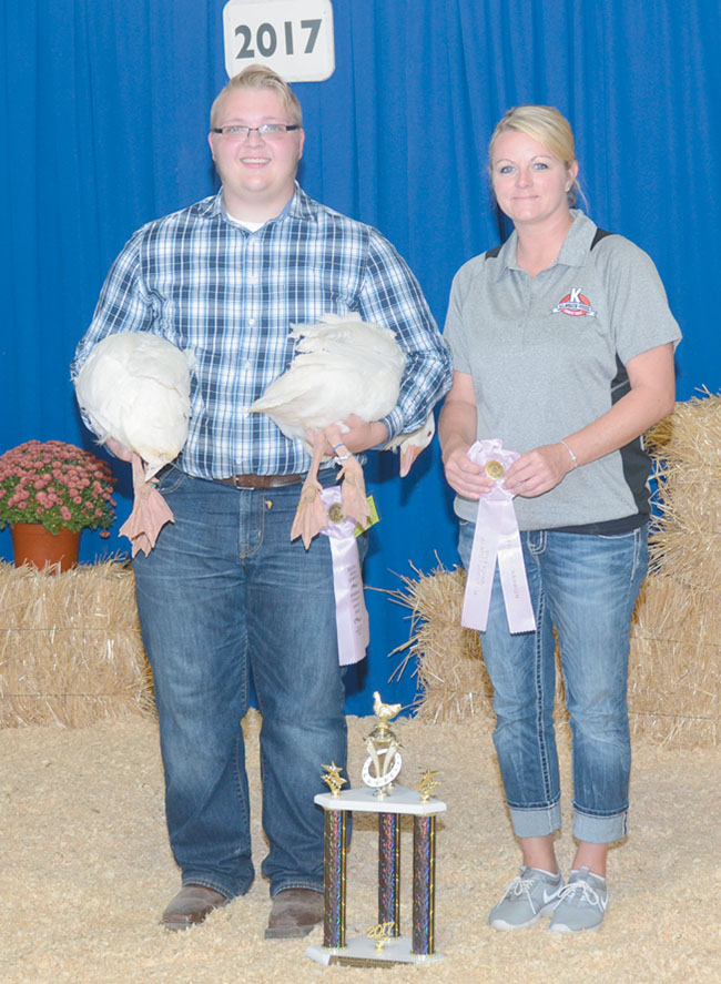 Reserve champion market geese